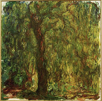 Monet, Weeping willow by AKG  Images