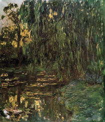 Monet / Waterlily Pond with Willow Tree by AKG  Images