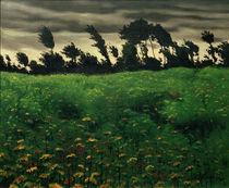 F.Vallotton, The blooming field by AKG  Images