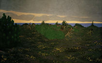 F.Vallotton, An evening in antiquity by AKG  Images
