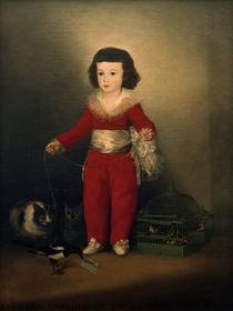 Manuel Osorio M. de Zúñiga / Gem. v. Goya von AKG  Images