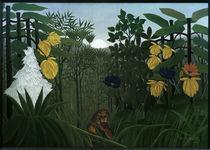H.Rousseau, Die Mahlzeit des Löwen by AKG  Images