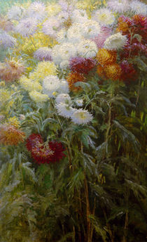 Caillebotte / Chrysanthemums / Painting by AKG  Images