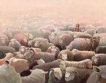 Schafe von Kapela 2