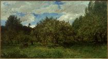 C.F.Daubigny, Französischer Obstgarten zur Erntezeit by AKG  Images