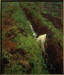 E.Werenskiold, Einen Graben ausheben von AKG  Images