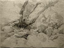 Ernst Fries, Verkrüppelter Baumstamm auf Felsen von AKG  Images