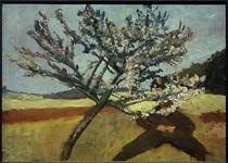 P.Modersohn-Becker, Liegender Mann unter blühendem Baum by AKG  Images
