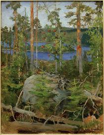 A.Gallen-Kallela, Blick auf den Jamajärvi-See von AKG  Images