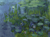 Monet, Water lilies by AKG  Images