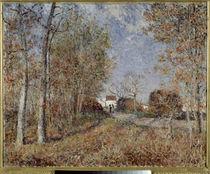 A.Sisley, Un coin de bois aux Sablons von AKG  Images