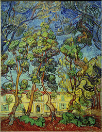 V. van Gogh, Hospital at Saint-Rémy by AKG  Images
