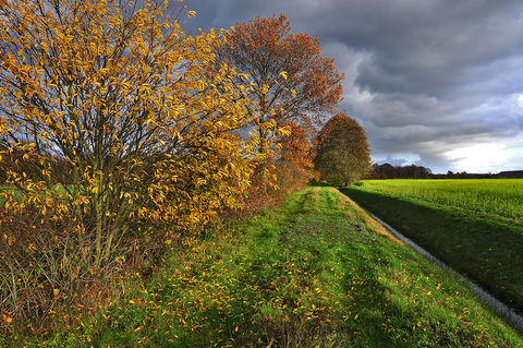 Herbstland