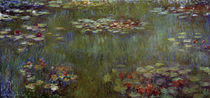 Monet / Waterlily Pond / Painting by AKG  Images