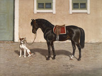Pferd, Rappe / nach H.Sperling von AKG  Images