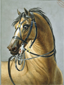 French military bridle 1812 / C.Vernet by AKG  Images