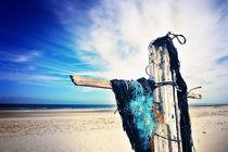 Jesus kam nur bis zur Nordsee von Thomas Schaefer