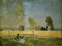 Claude Monet / Summer/ 1874 by AKG  Images