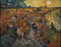 Van Gogh / Der rote Weinberg/ 1888 von AKG  Images