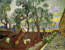 van Gogh / Garden of St. Paul Hospital by AKG  Images
