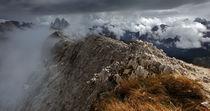 Gratwanderung by Franz Schumacher