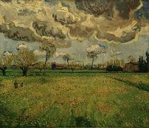 V. van Gogh, Wiesen (Arles) von AKG  Images