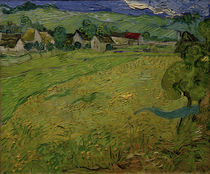 V. v. Gogh, Les Vessenots, Auvers / Ptg./1890 by AKG  Images
