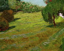 V. v. Gogh, Sunny Lawn in Public Park/1888 by AKG  Images