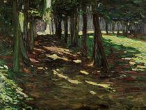 Kandinsky / Park of Saint Cloud / 1906 by AKG  Images