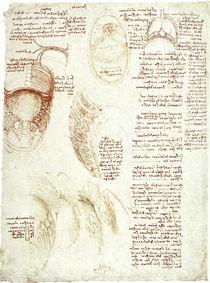 Leonardo / Brustkorb Zwerchfell / fol. 186 r by AKG  Images