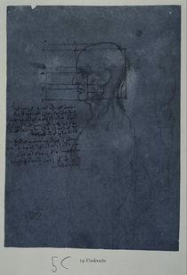 Vinci / Männl. Kopf / Profil / fol. 19 r von AKG  Images