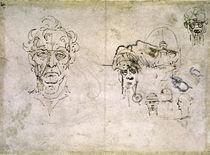 Vinci / Alter Mann / Seh-u. Gehörnerv/fol32 v von AKG  Images