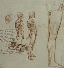 Leonardo / Bewegungsstudien u. a. / fol. 82r von AKG  Images
