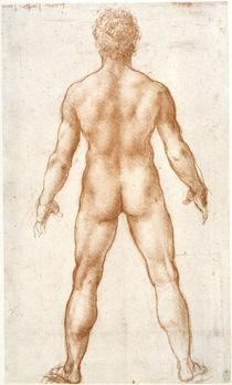 Leonardo / Männlicher Akt Rücken / fol. 84r von AKG  Images