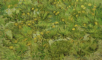 Dandelions / V.v. Gogh / Painting 1889 by AKG  Images