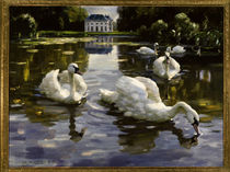 Swans in Nymphenburg / A.Koester / Painting by AKG  Images