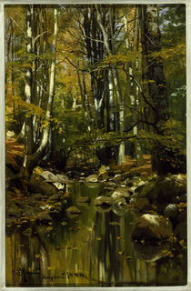 Peder Mørk Mønsted, Forest Stream in Late Summer by AKG  Images
