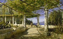 P. Mönsted, Pergola auf Capri mit Blick auf den Vesuv von AKG  Images