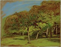 C.Monet, Fruit Trees, c. 1865–1875 by AKG  Images