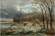 Wien, Hochwasser 1830,  Am Damm nächst dem Augarten / Aquarell von E. Gurk von AKG  Images