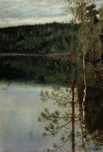 Akseli Gallen-Kallela, View of a Lake by AKG  Images