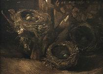 v. Gogh, Vogelnester von AKG  Images