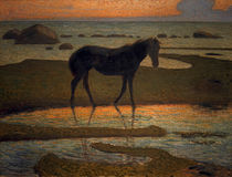 Kreuger / Horse on the Beach by AKG  Images