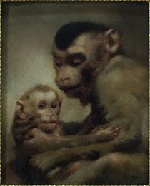 G.v.Max, Mutter mit Kind (Affen) von AKG  Images