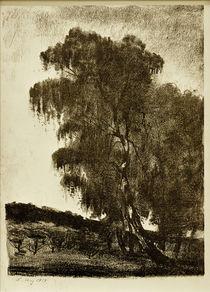 Lesser Ury, Birken von AKG  Images