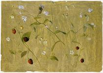 Senff / Erdbeeren u. Vergißmeinnicht/1827 von AKG  Images