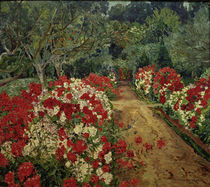 Philipp Franck, Garden Path with Phlox by AKG  Images
