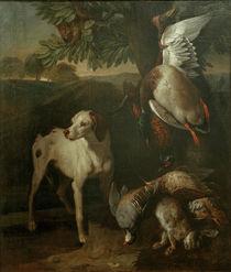 F.Desportes, Hund und Wild by AKG  Images