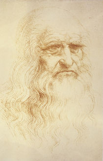 Leonardo, Self-portrait Turin by AKG  Images