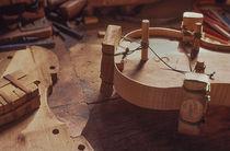 Making a Violin von David Halperin